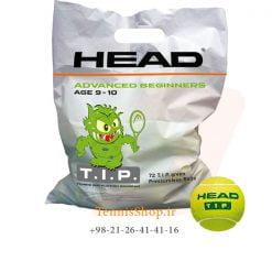پک 72 تایی توپ تنیس هد سری TIP مدل Polybag رنگ سبز