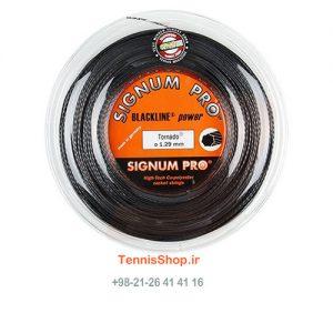 00 13X 300x300 - زه رول راکت تنیس Signum Pro Tornado Reel