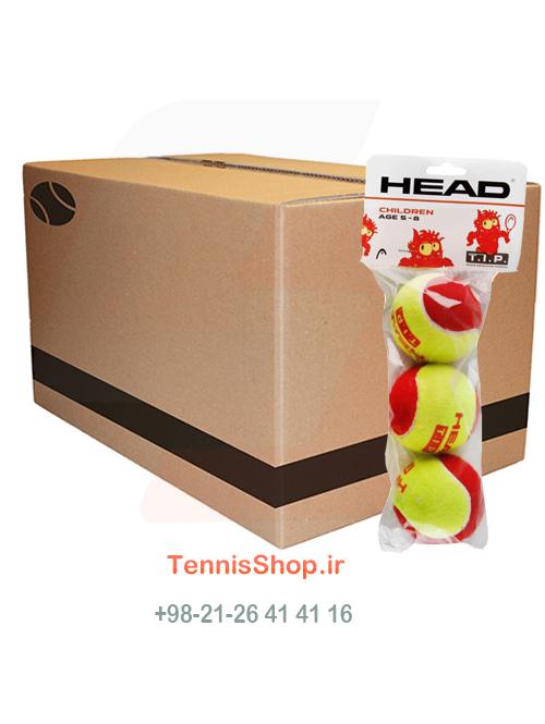 کارتن توپ تنیس Head TIP Red 3B