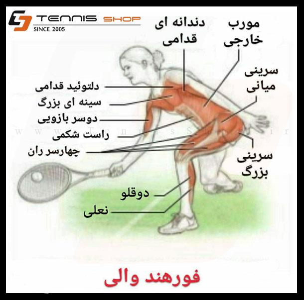 تنیس تراپی با شایان فلاحتی - شماره 15