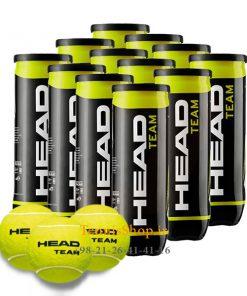 12 قوطی سه تایی توپ تنیس برند Head مدل Team 247x296 - 12 قوطی سه تایی توپ تنیس مدل Team برند Head