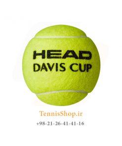 HEAD DAVIS CUP TENNIS BALL 247x296 - 12 قوطی سه تایی توپ تنیس مدل Davis Cup برند Head