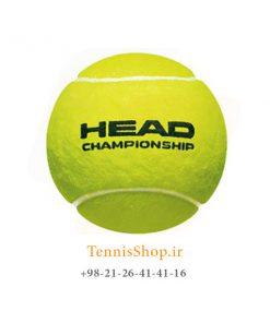 HEAD TENNIS BALL CHAMPIONSHIP 247x296 - 12 قوطی سه تایی توپ تنیس برند Head مدل Championship