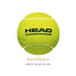HEAD TENNIS BALL CHAMPIONSHIP 300x300 - کارتن 24 عدد قوطی 3 تایی توپ تنیس برند Head مدل Championship