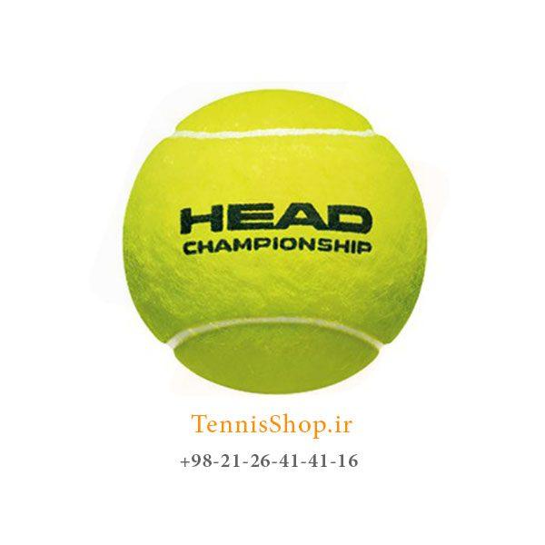 HEAD TENNIS BALL CHAMPIONSHIP 600x600 - 12 قوطی سه تایی توپ تنیس برند Head مدل Championship