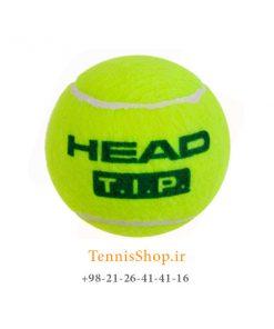 HEAD TENNIS BALL TIP GREEN 247x296 - قوطی سه تایی توپ تنیس سبز برند HEAD مدلTIP