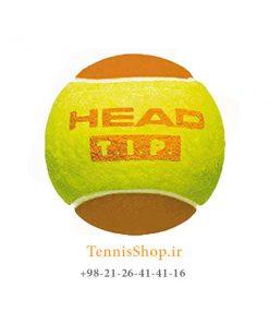 HEAD TENNIS BALL TIP ORANGE 247x296 - 12 قوطی سه تایی توپ تنیس نارنجی برند HEAD مدل TIP
