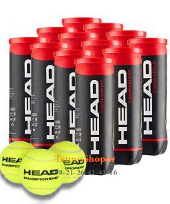 head 12 can championship 3B 247x296 - 12 قوطی سه تایی توپ تنیس برند Head مدل Championship