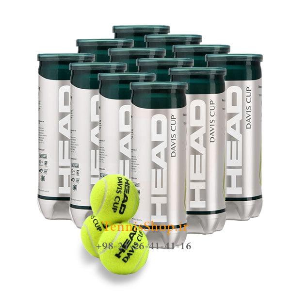 12 قوطی سه تایی توپ تنیس هد سری Davis Cup