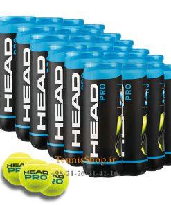 24 عددی قوطی 3 تایی توپ تنیس HEAD مدل PRO 247x296 - کارتن 24 عددی قوطی 3 تایی توپ تنیس HEAD مدل PRO